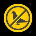 ochrona-budynkow-przed-ptakami